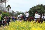 서귀포 유채꽃 국제걷기대회 2018